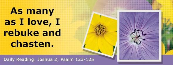 https://bibletruthpublishers.com/DailyLight/wp-content/uploads/dl-hdg-2018-361.jpg