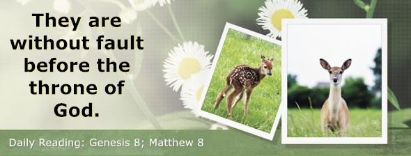 https://bibletruthpublishers.com/DailyLight/wp-content/uploads/dl-hdg-2019-016.jpg