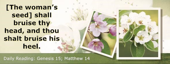 https://bibletruthpublishers.com/DailyLight/wp-content/uploads/dl-hdg-2019-028.jpg