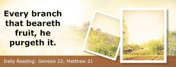 https://bibletruthpublishers.com/DailyLight/wp-content/uploads/dl-hdg-2019-041.jpg