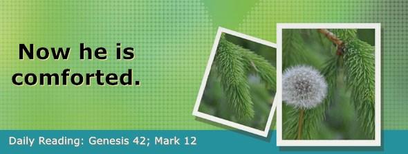 https://bibletruthpublishers.com/DailyLight/wp-content/uploads/dl-hdg-2019-079.jpg