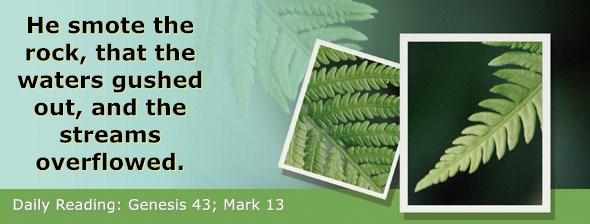 https://bibletruthpublishers.com/DailyLight/wp-content/uploads/dl-hdg-2019-082.jpg