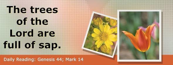 https://bibletruthpublishers.com/DailyLight/wp-content/uploads/dl-hdg-2019-084.jpg