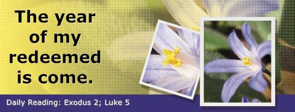 https://bibletruthpublishers.com/DailyLight/wp-content/uploads/dl-hdg-2019-100.jpg