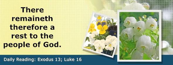 https://bibletruthpublishers.com/DailyLight/wp-content/uploads/dl-hdg-2019-122.jpg