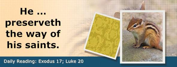 https://bibletruthpublishers.com/DailyLight/wp-content/uploads/dl-hdg-2019-129.jpg