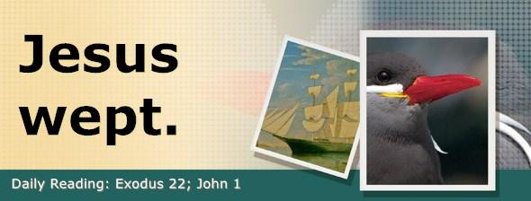 https://bibletruthpublishers.com/DailyLight/wp-content/uploads/dl-hdg-2019-140.jpg