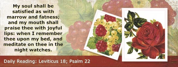 https://bibletruthpublishers.com/DailyLight/wp-content/uploads/dl-hdg-2019-207.jpg