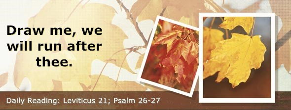 https://bibletruthpublishers.com/DailyLight/wp-content/uploads/dl-hdg-2019-214.jpg