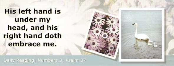 https://bibletruthpublishers.com/DailyLight/wp-content/uploads/dl-hdg-2019-231.jpg