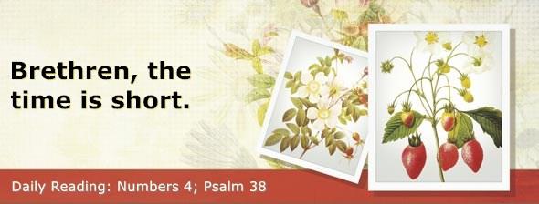 https://bibletruthpublishers.com/DailyLight/wp-content/uploads/dl-hdg-2019-233.jpg