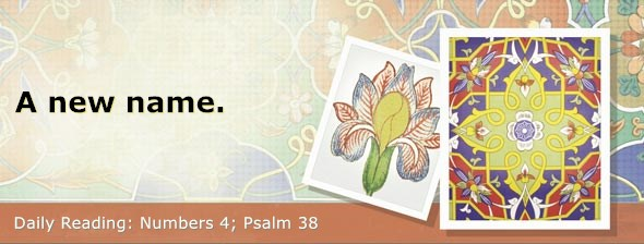 https://bibletruthpublishers.com/DailyLight/wp-content/uploads/dl-hdg-2019-234.jpg