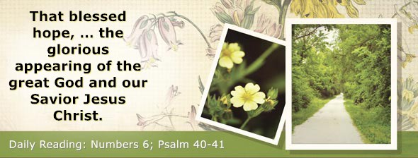 https://bibletruthpublishers.com/DailyLight/wp-content/uploads/dl-hdg-2019-238.jpg