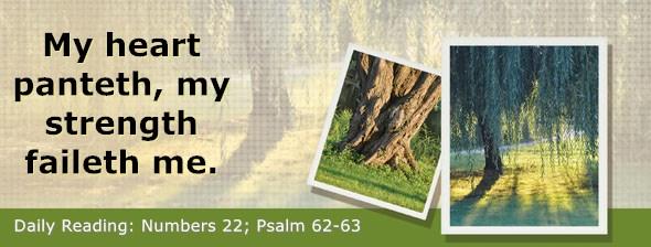 https://bibletruthpublishers.com/DailyLight/wp-content/uploads/dl-hdg-2019-266.jpg