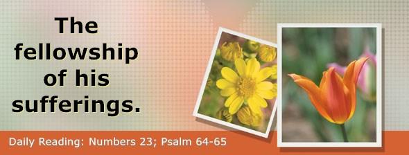 https://bibletruthpublishers.com/DailyLight/wp-content/uploads/dl-hdg-2019-267.jpg