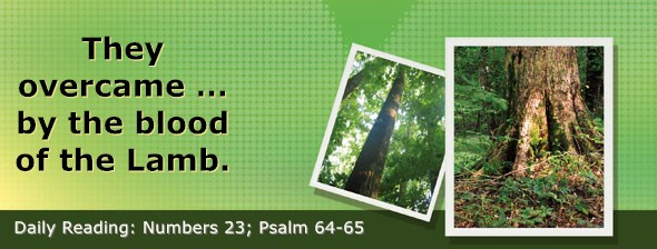 https://bibletruthpublishers.com/DailyLight/wp-content/uploads/dl-hdg-2019-268.jpg