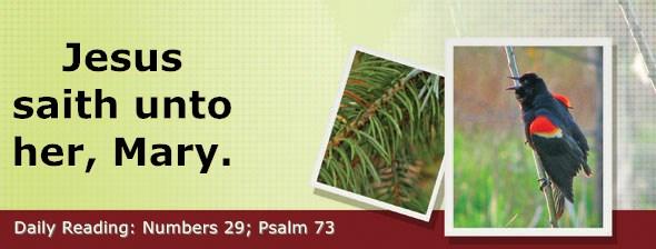 https://bibletruthpublishers.com/DailyLight/wp-content/uploads/dl-hdg-2019-280.jpg