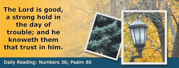 https://bibletruthpublishers.com/DailyLight/wp-content/uploads/dl-hdg-2019-293.jpg