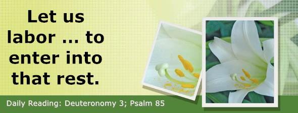 https://bibletruthpublishers.com/DailyLight/wp-content/uploads/dl-hdg-2019-299.jpg