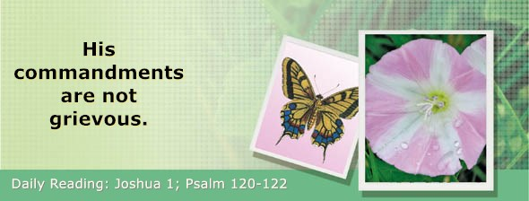 https://bibletruthpublishers.com/DailyLight/wp-content/uploads/dl-hdg-2019-359.jpg