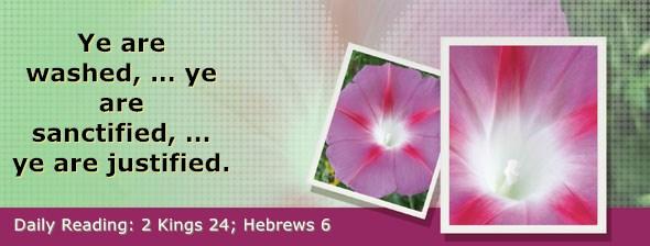 https://bibletruthpublishers.com/DailyLight/wp-content/uploads/dl-hdg-2019-630.jpg