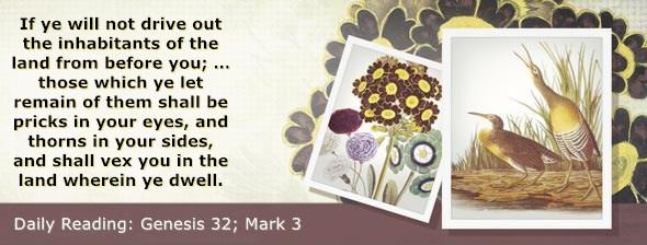 https://bibletruthpublishers.com/DailyLight/wp-content/uploads/dl-hdg-2020-061.jpg