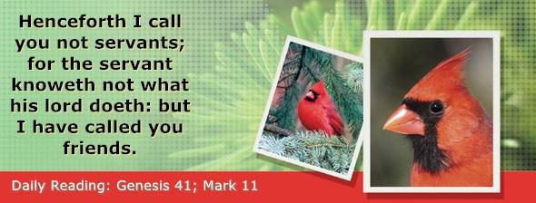 https://bibletruthpublishers.com/DailyLight/wp-content/uploads/dl-hdg-2020-077.jpg
