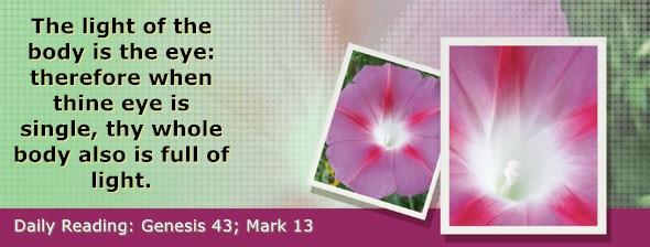 https://bibletruthpublishers.com/DailyLight/wp-content/uploads/dl-hdg-2020-081.jpg
