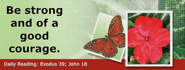 https://bibletruthpublishers.com/DailyLight/wp-content/uploads/dl-hdg-2020-175.jpg