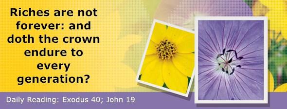 https://bibletruthpublishers.com/DailyLight/wp-content/uploads/dl-hdg-2020-178.jpg