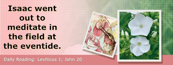 https://bibletruthpublishers.com/DailyLight/wp-content/uploads/dl-hdg-2020-179.jpg
