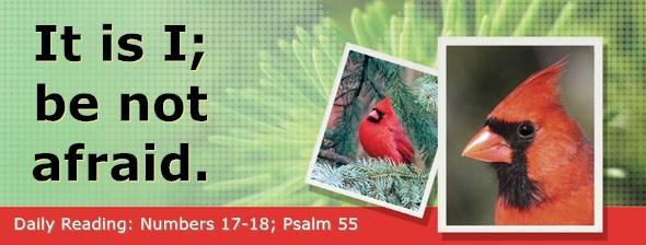 https://bibletruthpublishers.com/DailyLight/wp-content/uploads/dl-hdg-2020-260.jpg
