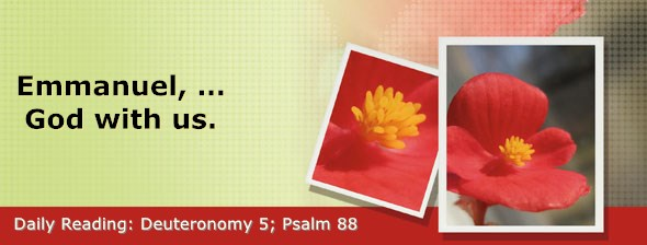 https://bibletruthpublishers.com/DailyLight/wp-content/uploads/dl-hdg-2020-306.jpg