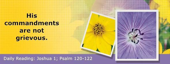 https://bibletruthpublishers.com/DailyLight/wp-content/uploads/dl-hdg-2020-361.jpg
