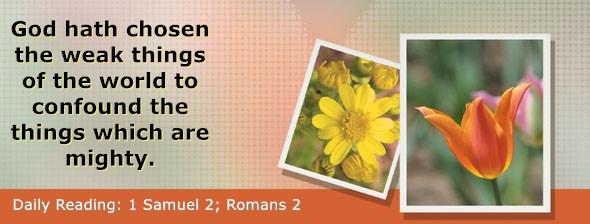 https://bibletruthpublishers.com/DailyLight/wp-content/uploads/dl-hdg-2020-450.jpg