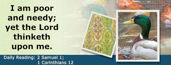 https://bibletruthpublishers.com/DailyLight/wp-content/uploads/dl-hdg-2020-502.jpg