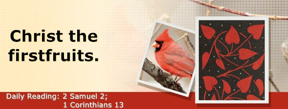 https://bibletruthpublishers.com/DailyLight/wp-content/uploads/dl-hdg-2020-504.jpg