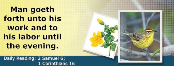 https://bibletruthpublishers.com/DailyLight/wp-content/uploads/dl-hdg-2020-510.jpg