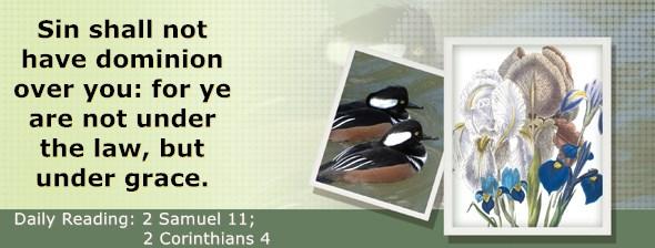https://bibletruthpublishers.com/DailyLight/wp-content/uploads/dl-hdg-2020-517.jpg
