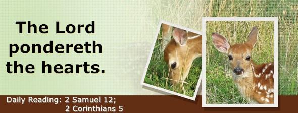 https://bibletruthpublishers.com/DailyLight/wp-content/uploads/dl-hdg-2020-519.jpg