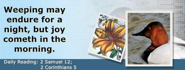 https://bibletruthpublishers.com/DailyLight/wp-content/uploads/dl-hdg-2020-520.jpg