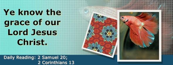 https://bibletruthpublishers.com/DailyLight/wp-content/uploads/dl-hdg-2020-536.jpg