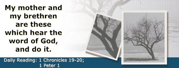 https://bibletruthpublishers.com/DailyLight/wp-content/uploads/dl-hdg-2020-657.jpg