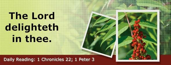 https://bibletruthpublishers.com/DailyLight/wp-content/uploads/dl-hdg-2020-661.jpg