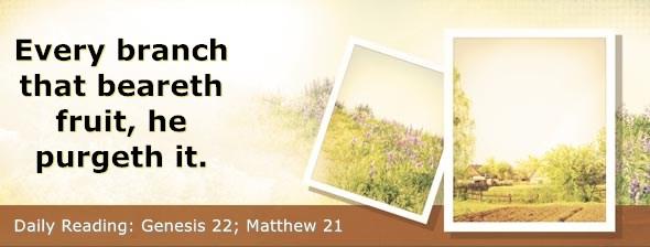 https://bibletruthpublishers.com/DailyLight/wp-content/uploads/dl-hdg-2021-041.jpg
