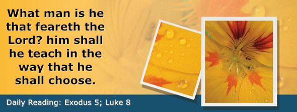 https://bibletruthpublishers.com/DailyLight/wp-content/uploads/dl-hdg-2021-105.jpg