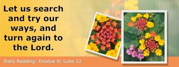 https://bibletruthpublishers.com/DailyLight/wp-content/uploads/dl-hdg-2021-113.jpg