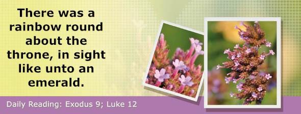https://bibletruthpublishers.com/DailyLight/wp-content/uploads/dl-hdg-2021-114.jpg