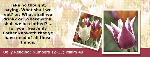 https://bibletruthpublishers.com/DailyLight/wp-content/uploads/dl-hdg-2021-249.jpg