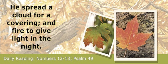 https://bibletruthpublishers.com/DailyLight/wp-content/uploads/dl-hdg-2021-250.jpg